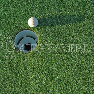 golfrasen rasensamen f r spielbahn und abschlagplatz g nstig kaufen. Black Bedroom Furniture Sets. Home Design Ideas