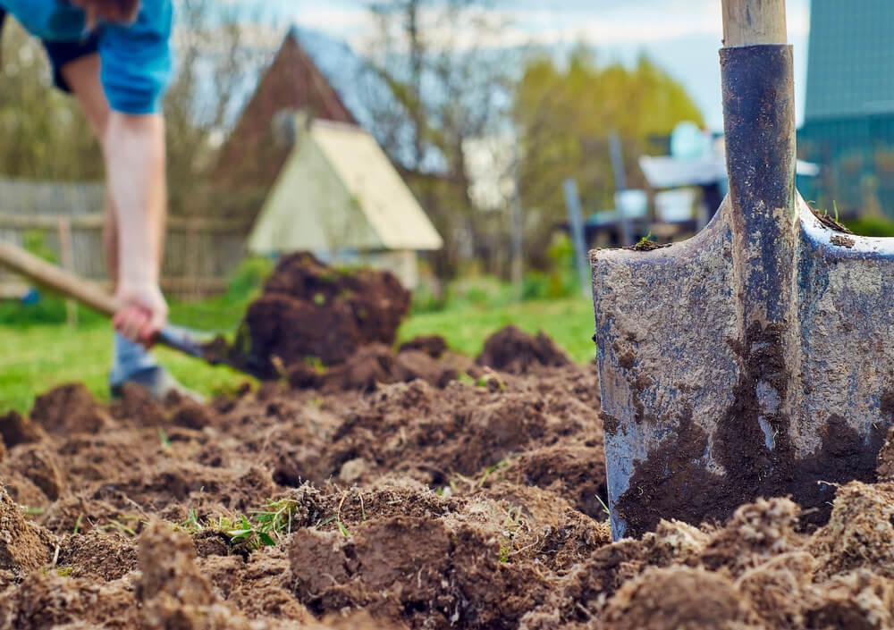 Pflege der Gartenbeete — Stockfoto