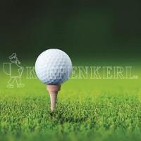 Kiepenkerl DSV RSM 4.3 Golfrasen Abschlag