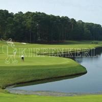 Kiepenkerl Golfrasen Masters Nachsaat tiefschnittverträglich