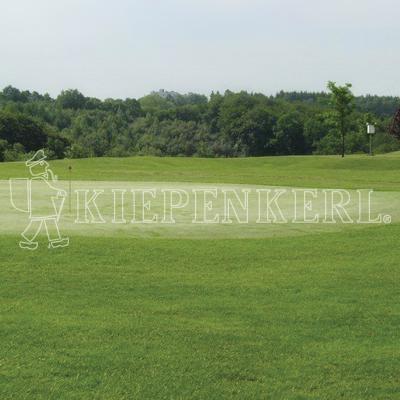 Kiepenkerl RSM 4.2.1 Golfrasen Vorgrün 10 kg Rasensamen
