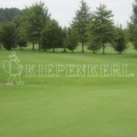 Kiepenkerl DSV RSM 4.4.2 Golfrasen Spielbahn 10kg Rasensamen