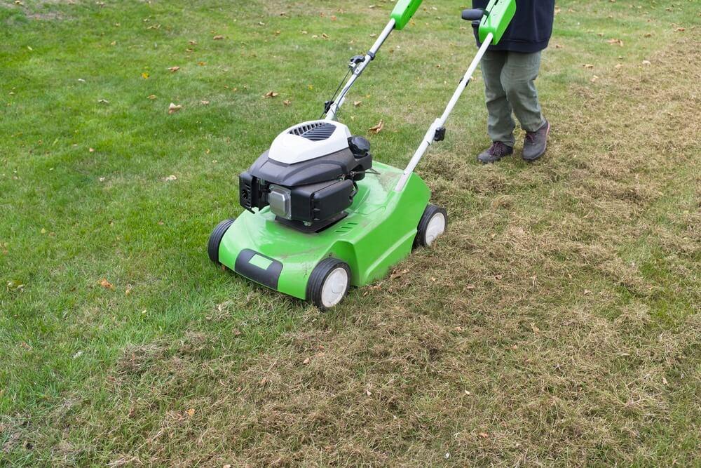 Rasenvertikutieren Mit Einem Vertikutierer Person Entstromt Moos Einem Hinterhof Rasenpflege — Stockfoto