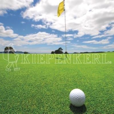 Kiepenkerl DSV RSM 4.1.1 Golfrasen Grün 10kg Rasensamen
