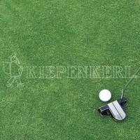 Kiepenkerl DSV 417 Golfrasen Grün Nachsaat 10 kg Rasensamen