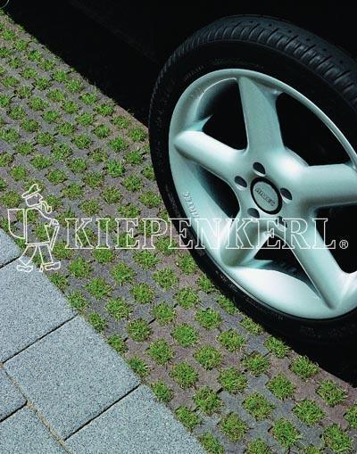 Kiepenkerl RSM 5.1.1 Parkplatzrasen ohne Achillea 10 kg Rasensamen