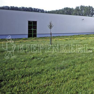 Kiepenkerl DSV RSM 7.1.2 Landschaftsrasen Standard mit Kräutern 10 kg Rasensamen