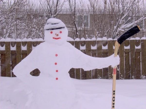 schneeschimmel