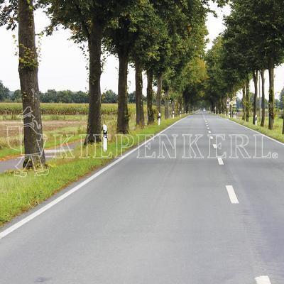 Kiepenkerl Straßenbegleitgrün DSV 820 10 kg