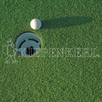 Kiepenkerl DSV RSM 4.1.3 Golfrasen Grün 10kg Rasensamen
