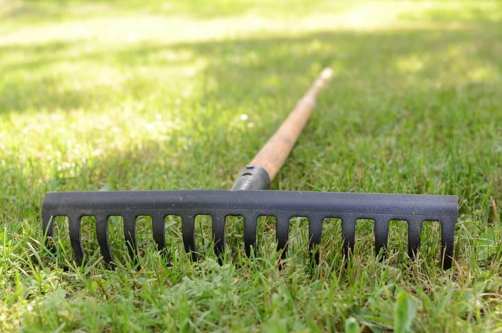 Harke auf Gras liegend — Stockfoto