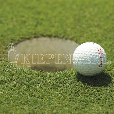 Kiepenkerl DSV RSM 4.1.2 Golfrasen Grün 10kg Rasensamen