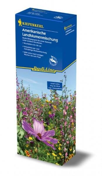 Kiepenkerl Profi-Line Blumenmischung Landblumenmischung Blumensamen