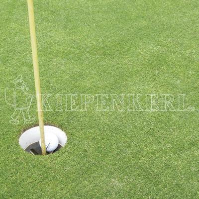 Kiepenkerl Golfrasen Masters Fairway 445